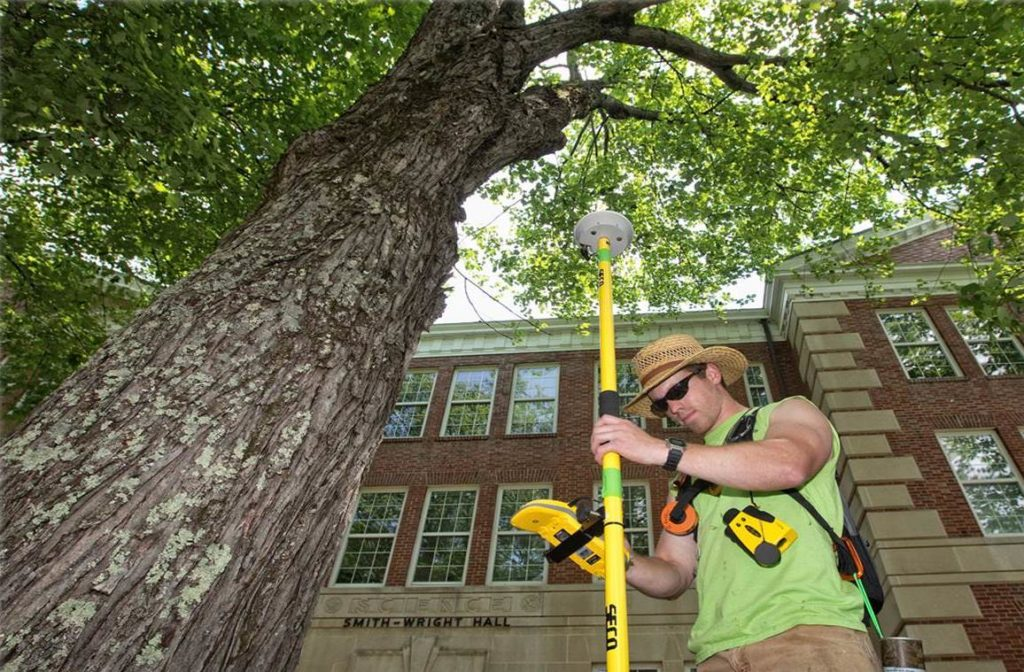 Arborist Consultations-Gibsonton FL Tree Trimming and Stump Grinding Services-We Offer Tree Trimming Services, Tree Removal, Tree Pruning, Tree Cutting, Residential and Commercial Tree Trimming Services, Storm Damage, Emergency Tree Removal, Land Clearing, Tree Companies, Tree Care Service, Stump Grinding, and we're the Best Tree Trimming Company Near You Guaranteed!