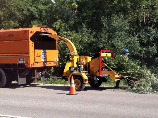 Commercial Tree Services-Gibsonton FL Tree Trimming and Stump Grinding Services-We Offer Tree Trimming Services, Tree Removal, Tree Pruning, Tree Cutting, Residential and Commercial Tree Trimming Services, Storm Damage, Emergency Tree Removal, Land Clearing, Tree Companies, Tree Care Service, Stump Grinding, and we're the Best Tree Trimming Company Near You Guaranteed!