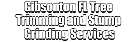 Gibsonton FL Tree Trimming and Stump Grinding Services Logo-We Offer Tree Trimming Services, Tree Removal, Tree Pruning, Tree Cutting, Residential and Commercial Tree Trimming Services, Storm Damage, Emergency Tree Removal, Land Clearing, Tree Companies, Tree Care Service, Stump Grinding, and we're the Best Tree Trimming Company Near You Guaranteed!