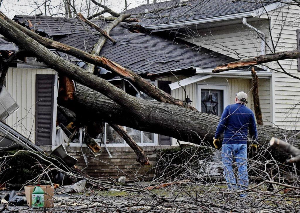 Storm Damage-Gibsonton FL Tree Trimming and Stump Grinding Services-We Offer Tree Trimming Services, Tree Removal, Tree Pruning, Tree Cutting, Residential and Commercial Tree Trimming Services, Storm Damage, Emergency Tree Removal, Land Clearing, Tree Companies, Tree Care Service, Stump Grinding, and we're the Best Tree Trimming Company Near You Guaranteed!